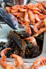 raw sea foods and fish at  sink