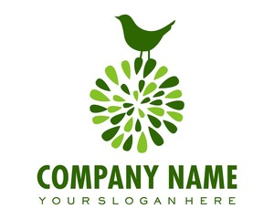 green bird sparrow logo image vector
