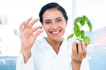 Scientist holding basil plant and pill