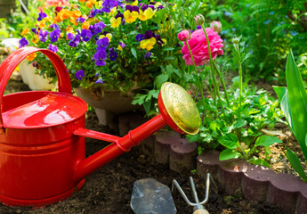 水まき 園芸