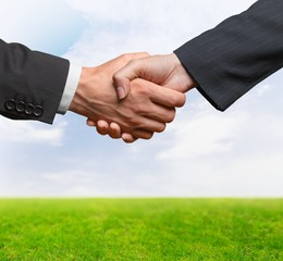 Handshake. Deal