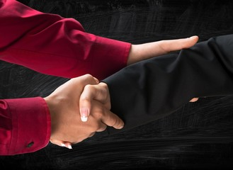 Handshake. Handshake