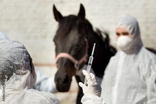 Spoed canvasdoek 2cm dik Paarden Horse vaccination