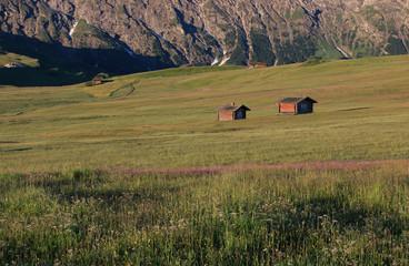 Alpe di Siusil