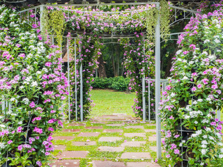 Blooming flower arch