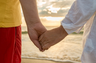 Senior man and woman holding hands of each other at the beach