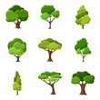 Set of abstract stylized trees - 82056055