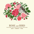 Card with bird, roses.