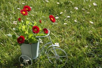 Kleines Deko Fahrrad mit Tausendschön auf der Wiese
