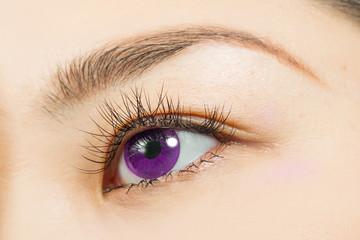アジア人 つけまつげとパープルカラーコンタクトレンズ Eyes of the Asian woman