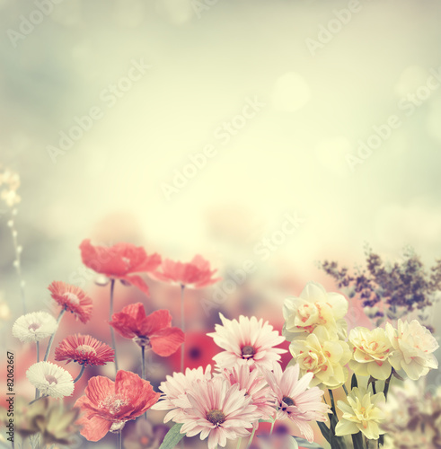 Foto op Canvas Bloemen Colorful Flowers