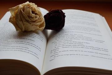 Libro y rosas