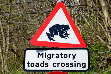 Road sign warning of migratory toads crossing in Britain