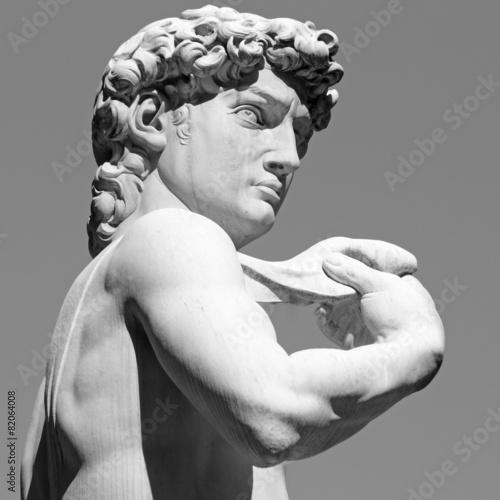 Tuinposter Standbeeld David by Michelangelo - famous Renaissance italian sculpture,