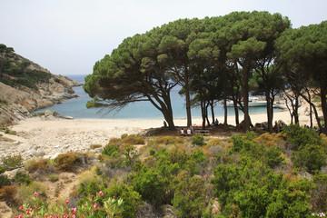 Toscana,Isola di Montecristo