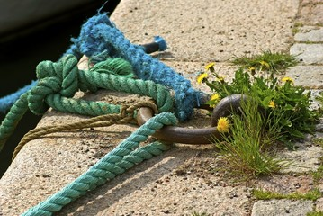 Green and blue mooring ropes in iron ring.