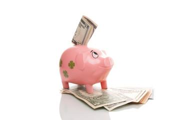 Rosa Sparschwein mit Dollar Scheine