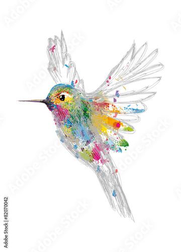 Zdjęcia na płótnie, fototapety, obrazy : Kolibri