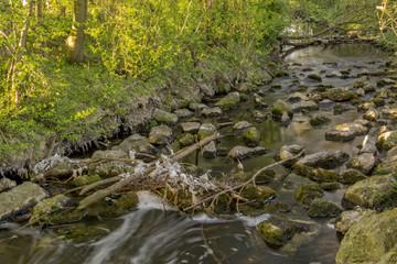 Fließendes Wasser im verschmutzten Bach
