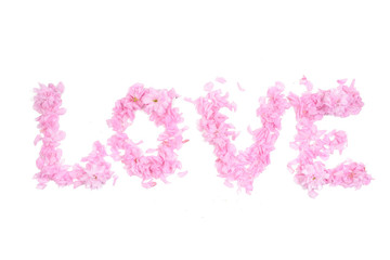 Word love composed from pink petals and flowers