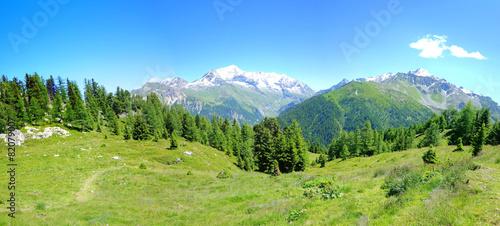 Vue Alpes © Gamut