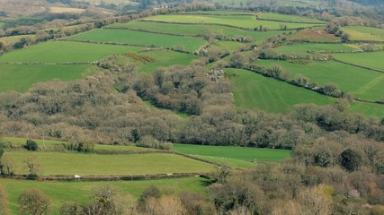 Car Passes Through Countryside Landscape