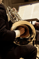 French horn in the hands of the musician