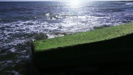 Frangiflutto coperto da alghe verdi