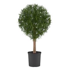 Decorative pot tree