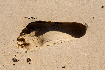 Footprint on the Beach in Ao Nang, Thailand