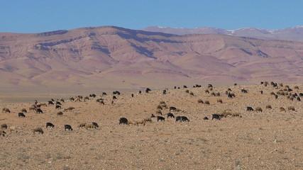 Morrocan Atlas Mountains
