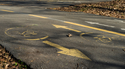 Bicycle road sign on asphalt in park