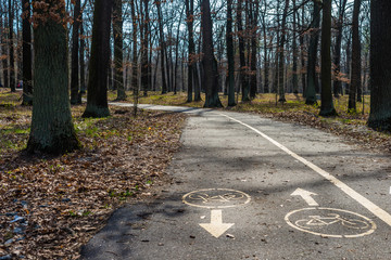 Bicycle road sign on asphalt in park