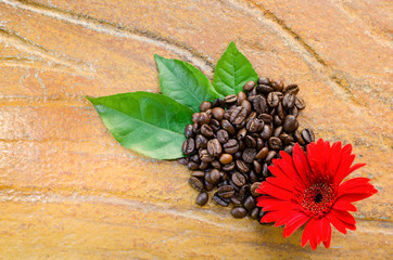 Coffee beans with flower and leaves top view