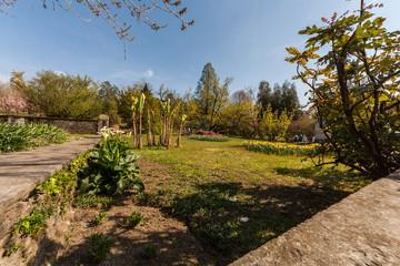 I giardini terrazzati, Villa Taranto, Verbania, Piemonte, Italia