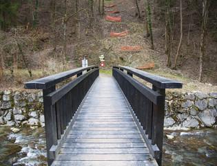 Bridge across mountain river