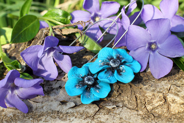 Handmade blue flower clay earrings on the nature background