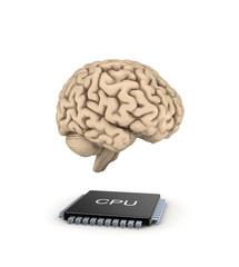 Human brain and microprocessor.