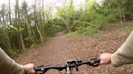 Mountain bike rider in the woods