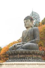 Buddha in the Sinheungsa Temple at Seoraksan National Park