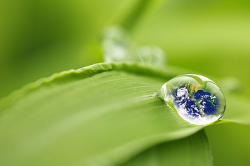 leaf with rain droplets - Recovery earth concept