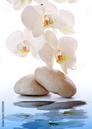 Foto op Aluminium Orchidee Massage Stones with white Orchid.