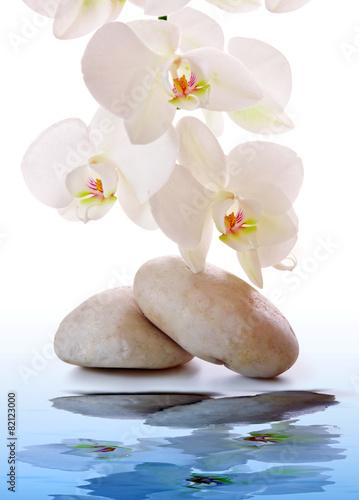 Foto op Plexiglas Orchidee Massage Stones with white Orchid.