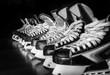 Hockey skates lined up in locker room - 82125830