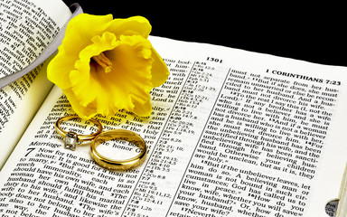 Bible on Marriage with Wedding Rings and Daffodil Closeup