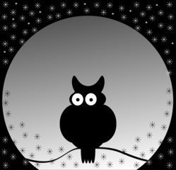 night owl on black and white stars