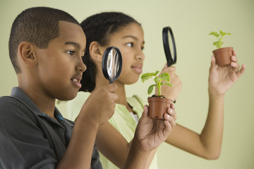 Mixed Race siblings looking through magnifying glasses at plants