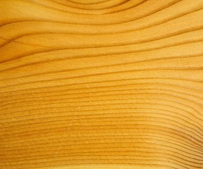 Brown larch wood background