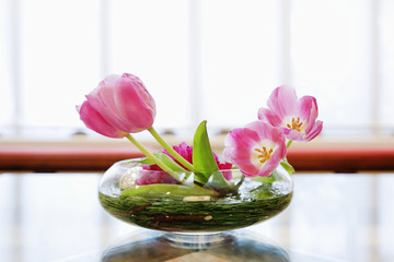 Bowl of Lilies