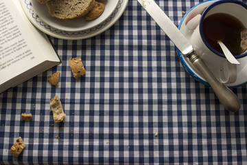 Breakfast tea, blue checkered tablecloth